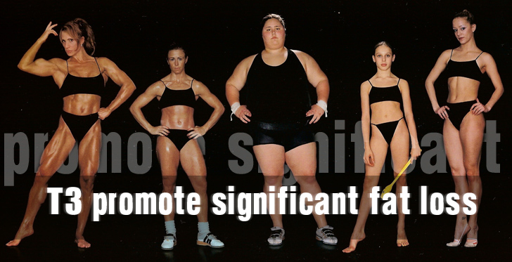 promote significant fat loss
